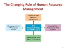 3 Examples Of Strategic Human Resource Management From Top Companies